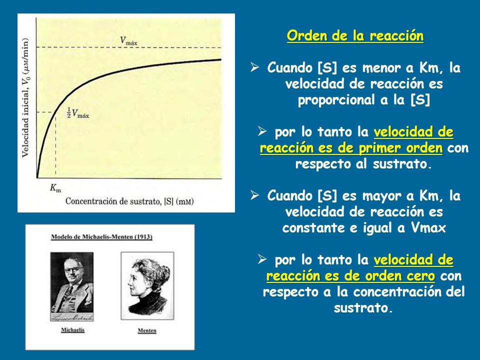 Orden de la reacción Cuando [S] es menor a Km, la velocidad de reacción es proporcional a la [S]